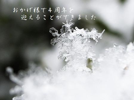 Ginnoyuki4_3